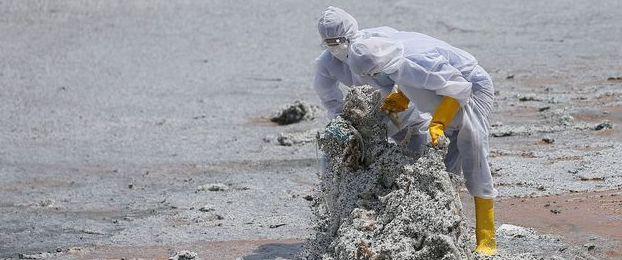 Les-billes-de-plastique-recouvrent-le-sable - copie.jpg